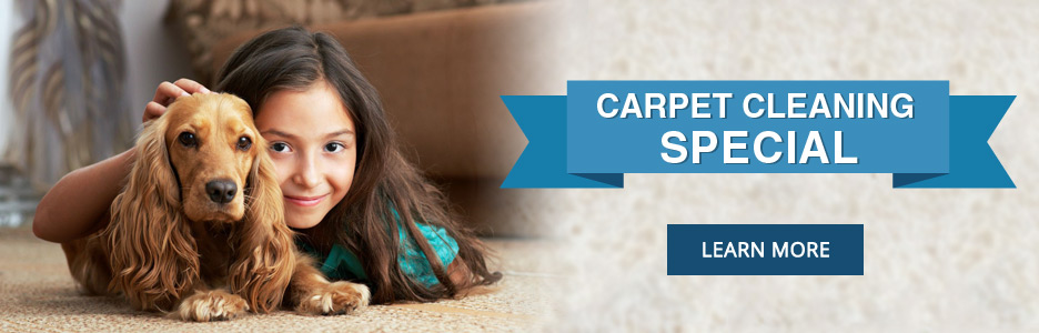 Carpet Cleaning Lloydminster, Cold Lake, North Battleford